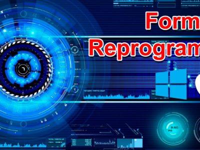 Formateo y Reprogramación