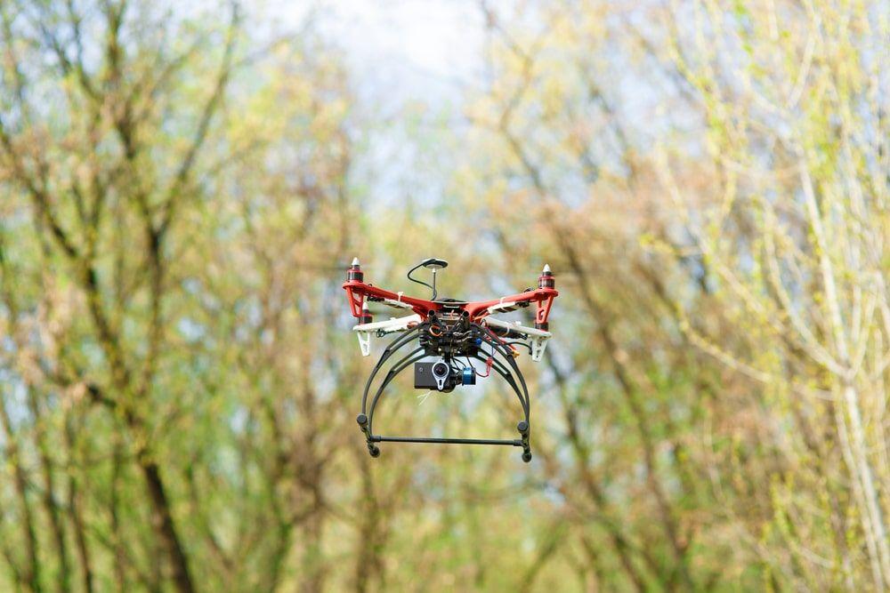 reforestación por drones