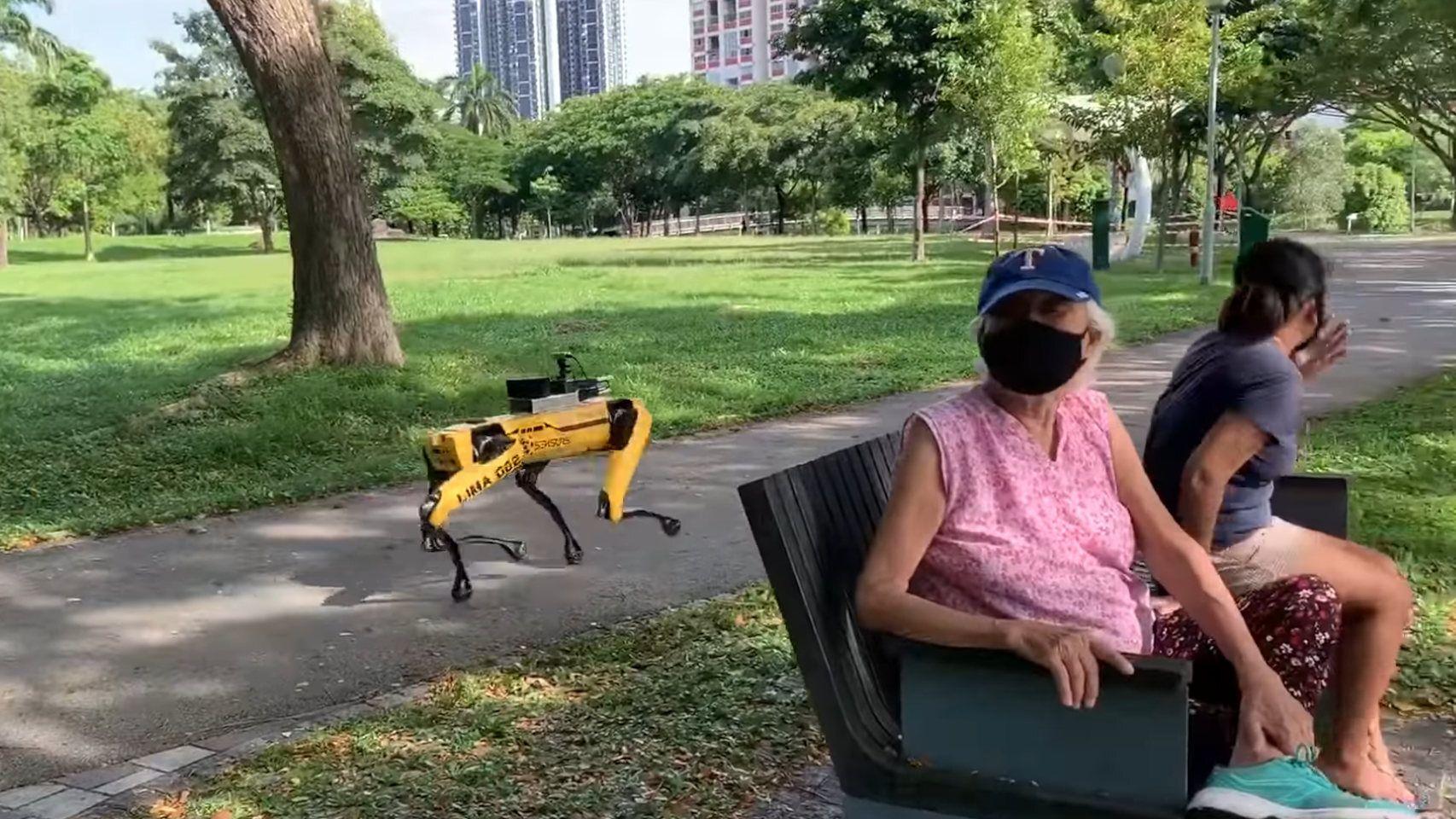 perro robótico